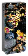 Fern Spring Yosemite Portable Battery Charger
