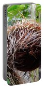 Fern Uncurling Portable Battery Charger