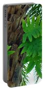Ferns 1 Portable Battery Charger