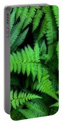 Ferns Along The River Portable Battery Charger