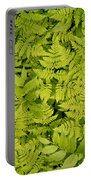 1m2436-ferns At The Base Of Mt. Robson  Portable Battery Charger