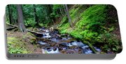 Ferns Dancing By The Creek Portable Battery Charger