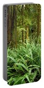 1a2912-ferns In Rain Forest Canada  Portable Battery Charger