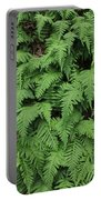 D3b6333-ferns In Sonoma 2  Portable Battery Charger