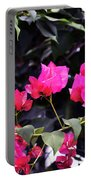 Fernwood Botanical Garden Bougainvillea Niles Michigan Usa Portable Battery Charger