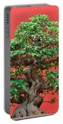 Ficus Bonsai Portable Battery Charger
