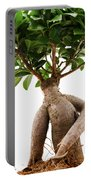 Ficus Ginseng Portable Battery Charger