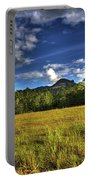 Field Bathed In Sunshine Portable Battery Charger