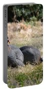 Field Guinea Portable Battery Charger
