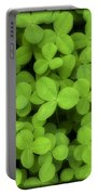 Field Of Clover E52 Portable Battery Charger