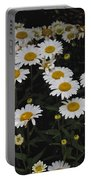 Field Of Daisies Portable Battery Charger