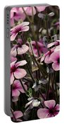 Field Of Lavender Portable Battery Charger