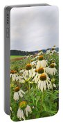 Field Of Medicine Perspective Portable Battery Charger