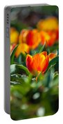 Field Of Orange Tulips Portable Battery Charger