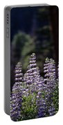 Field Of Summer Wildflowers Backlit Lupine  Portable Battery Charger