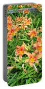 Field Of Tiger Lilies Portable Battery Charger
