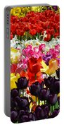 Field Of Tulips Ll Portable Battery Charger