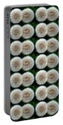 Field Of Wishes Portable Battery Charger