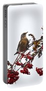 Fieldfare Portable Battery Charger