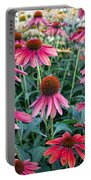 Fields Of Coneflower Portable Battery Charger
