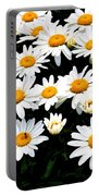 Fields Of Daisies Portable Battery Charger