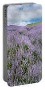 Fields Of Lupine 3 Portable Battery Charger