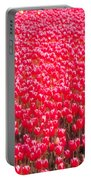 Fields Of Tulips Alkmaar Vicinity Portable Battery Charger
