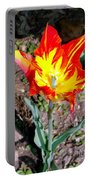 Fiery Beauty Portable Battery Charger