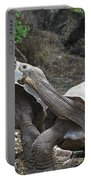 Fighting Galapagos Giant Tortoises Portable Battery Charger