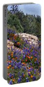 Figueroa Mountain Splendor Portable Battery Charger