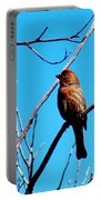 Finch On Branch 031015a Portable Battery Charger
