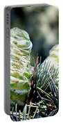 Fir Cone Portable Battery Charger