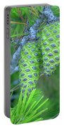 Fir Cones Portable Battery Charger