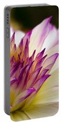 Fire And Ice - Dahlia Portable Battery Charger
