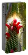 Firecracker Cacti Portable Battery Charger