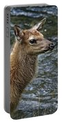 Firehole River Elk Fawn Portable Battery Charger