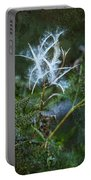 Fireweed Flame Out But Spreading Portable Battery Charger