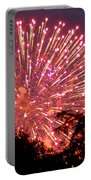 Fireworks 2014  1 Portable Battery Charger