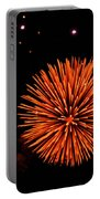 Fireworks 2014  11 Portable Battery Charger