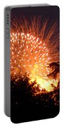 Fireworks 2014  5 Portable Battery Charger