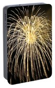 Fireworks At Night 3 Portable Battery Charger