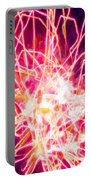 Fireworks At Night 6 Portable Battery Charger