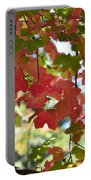 First Signs Of Fall  Portable Battery Charger