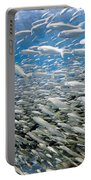 Fish Freeway Portable Battery Charger by Sean Davey