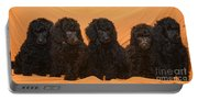 Five Poodle Puppies  Portable Battery Charger