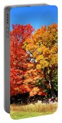 Flamboyant Autumn Portable Battery Charger