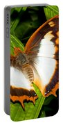 Flame Bordered Charaxes Butterfly Portable Battery Charger