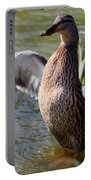Flap Those Wings Portable Battery Charger