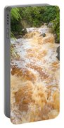 Flash Flood In West Coast Creek Of Nz South Island Portable Battery Charger