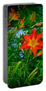 Flashes Of Garden Fire Portable Battery Charger